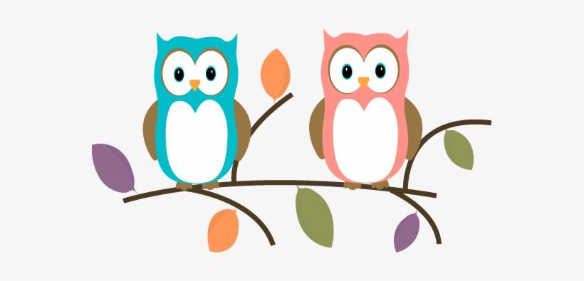 Owl Clipart Branch Clip Art Write A Letter To A Teacher Intro