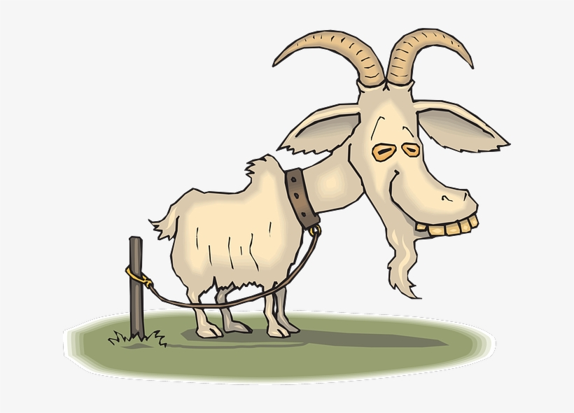 Happy Birthday You Old Goat Greeting Card, transparent png #1650