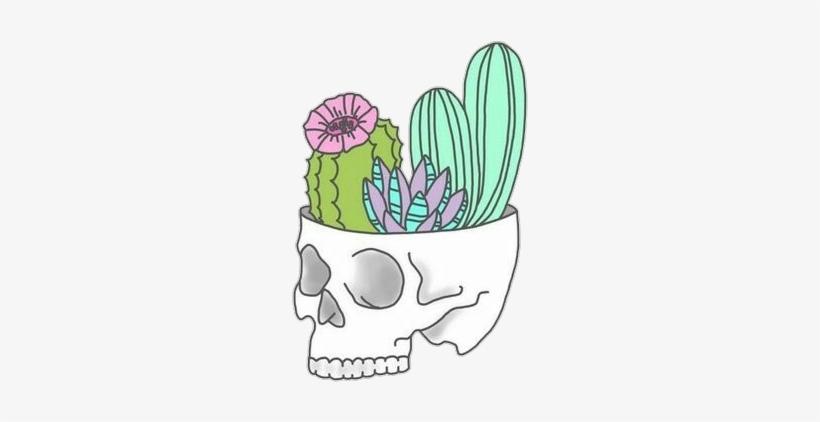 Tumblr Cactus Png - Stickers Tumblr Png Cactus, transparent png #4314