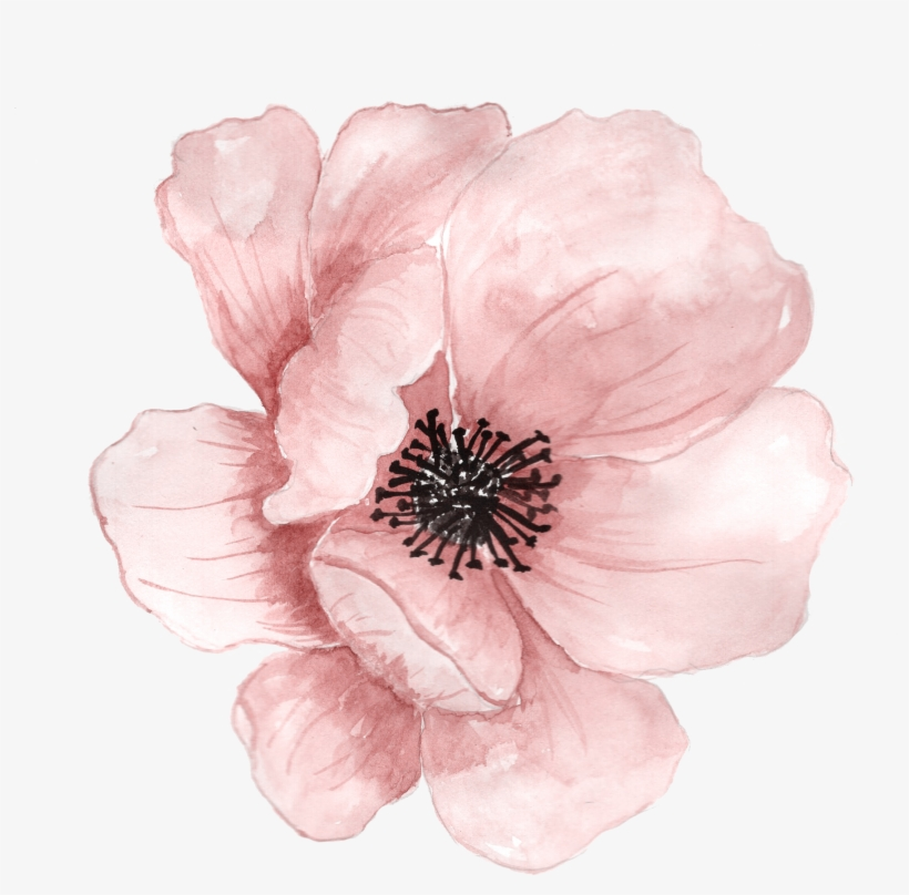 Flower Watercolor Painting Clip Art - Transparent Watercolor Flower Png, transparent png #4694