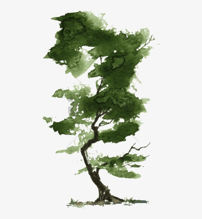 Little Watercolor Trees - Watercolor Tree, transparent png #4712