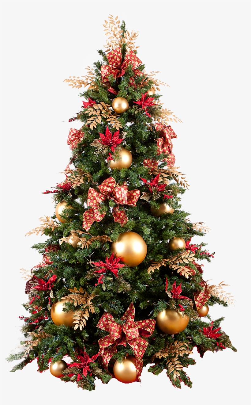 Christmas Tree Png - Christmas Tree No Background, transparent png #5248