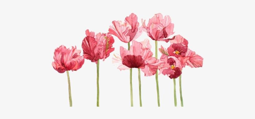 Transparent Flowers Google Search Flower Tumblr Banner - Flowers Transparent, transparent png #5283