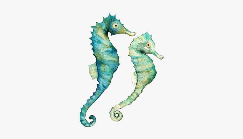Seahorses Watercolor Print, Watercolor Paintings, Watercolor - Sea Horse Watercolor, transparent png #5755