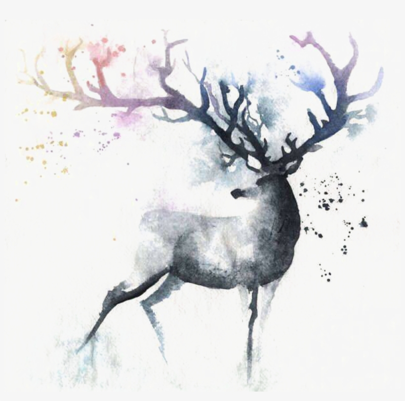 Deer Watercolor Painting Out Of The Cot Art - Deer Watercolor, transparent png #8101