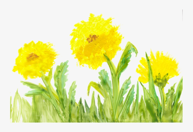 Local Artist Adds Flair To New Children's Book Series - Yellow Flower Watercolor Transparent, transparent png #13611