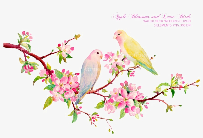 Love Birds Png Download Image - Spring Flowers Watercolor Clipart, transparent png #13847