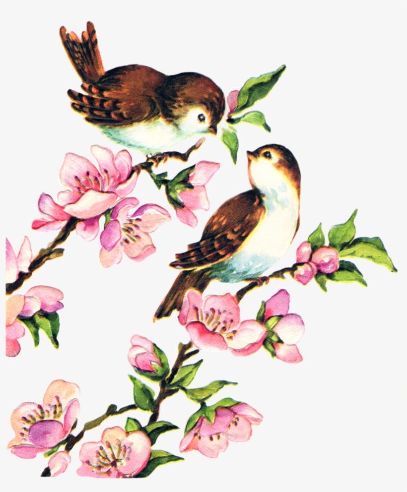 Free Collage Sheet Vintage Birds Fptfy - Clip Art Bird Vintage, transparent png #14352