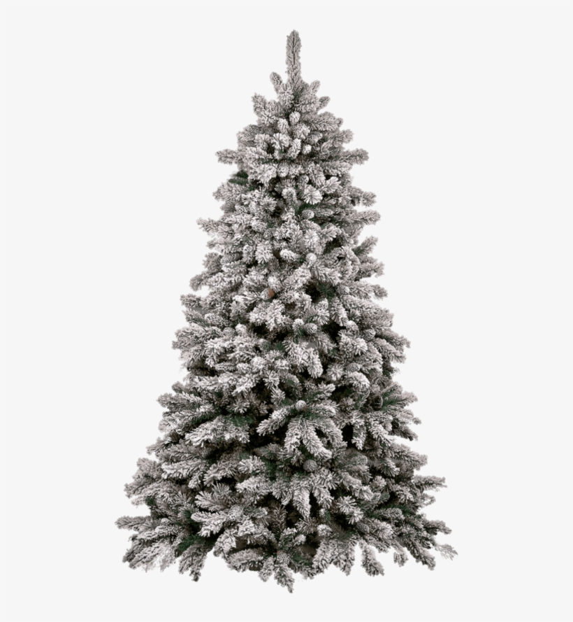 Christmas Tree Snow - Transparent Christmas Tree Png, transparent png #15031