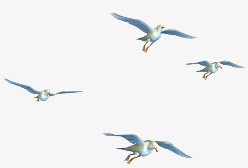 Flying Birds 07 Png Stock By Roys-art On Clipart Library - Flying Birds Images Png, transparent png #15162