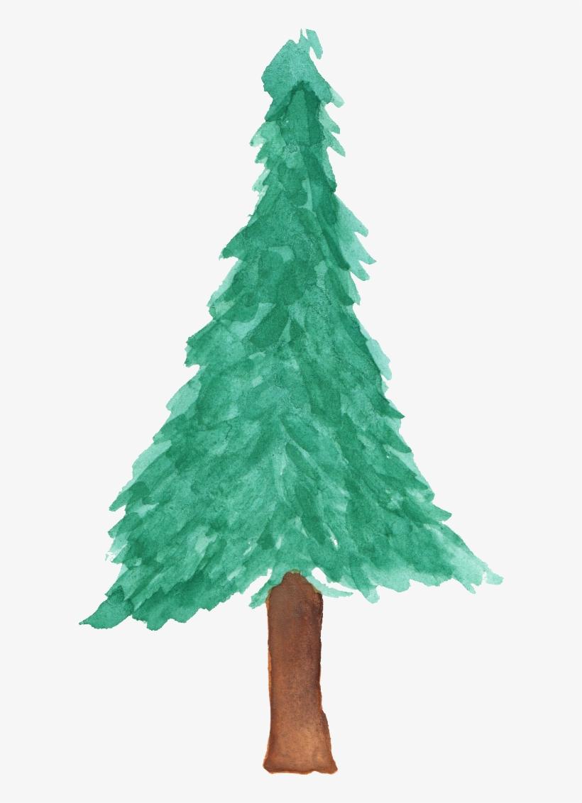 Pine Watercolor Png - Watercolor Christmas Tree Png, transparent png #17178