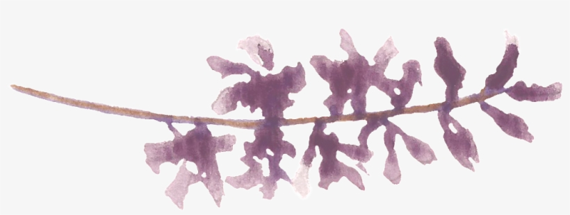 Purple Water Sprig Cartoon Transparent - Water, transparent png #100910