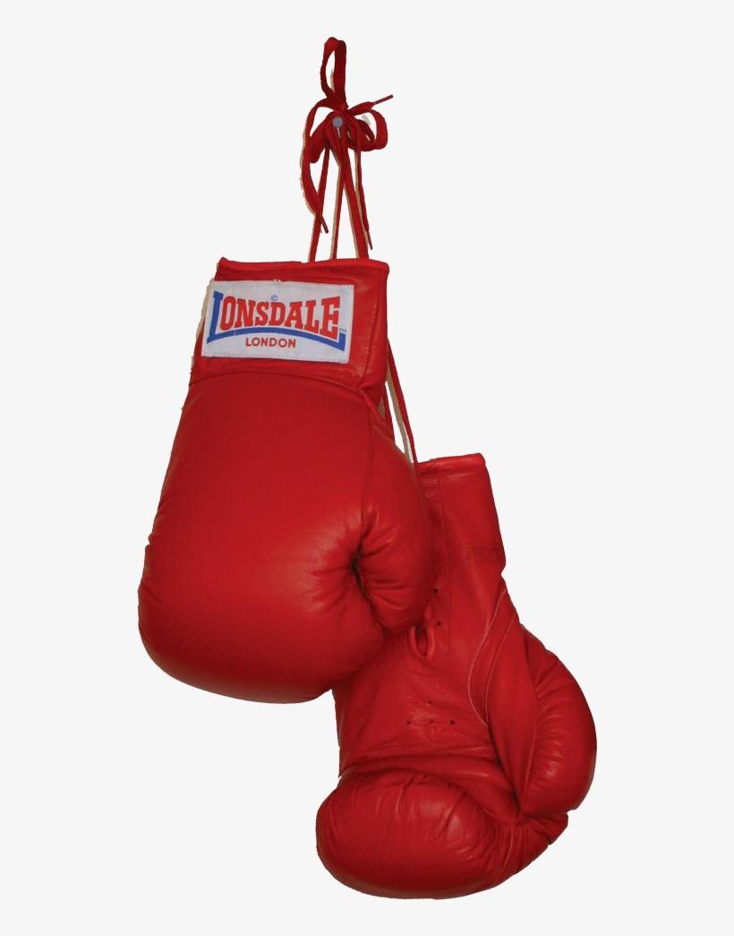 Boxing Gloves Download Png - Boxing Gloves Jpg, transparent png #102741