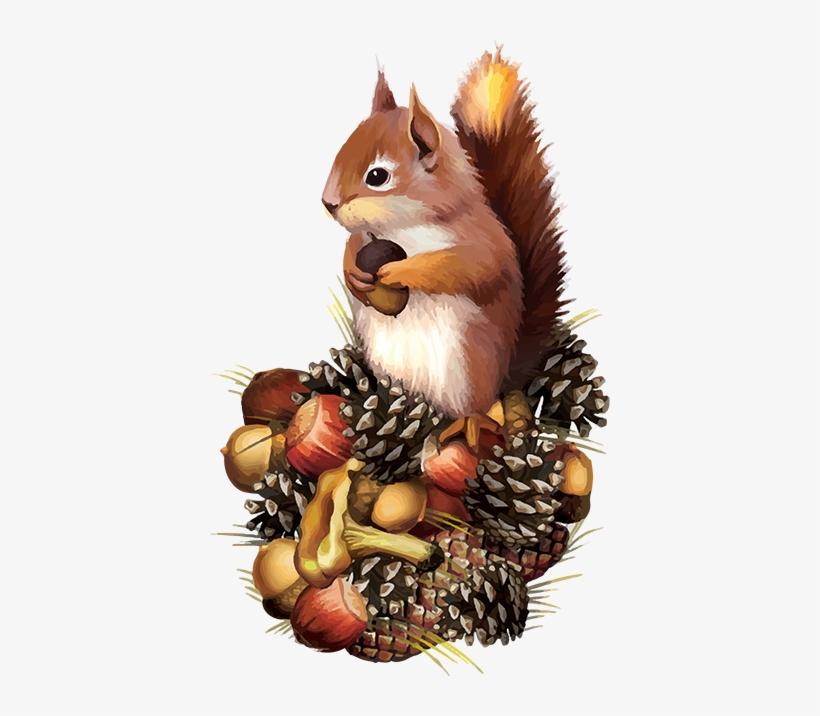 Tubes Écureuils Squirrel Clipart, Squirrel Art, Squirrel - Squirrel Fall Clip Art, transparent png #106251