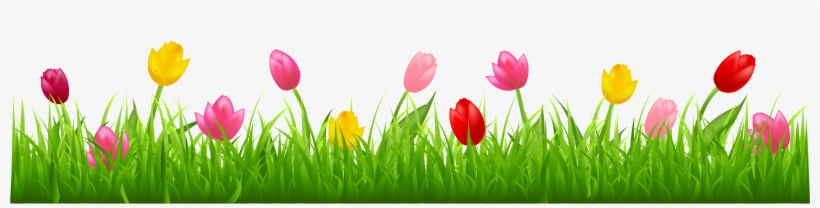 Grass Png Clip Art Imageu200b - Tulips Clip Art, transparent png #106701