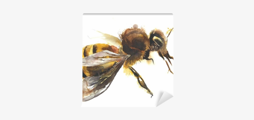 Honey Bee Watercolor Painting Hand Made Isolated On - Watercolor Painting, transparent png #108116