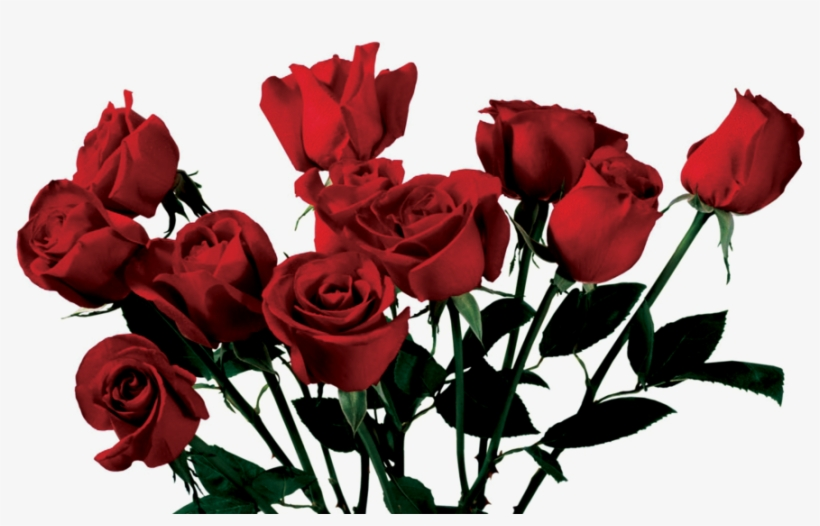 Rose Clipart Png Tumblr - Rose Aesthetic Png, transparent png #109452