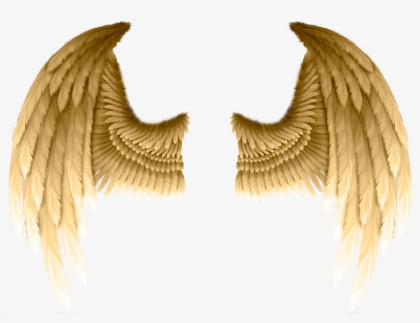 #freetoedit #ftestickers #dt #angelwings #wings #gold - Transparent Gold Angel Wings, transparent png #10066177