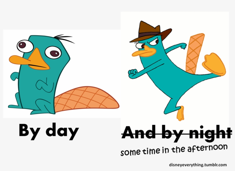""""""" Follow For More Disney's Phineas And Ferb Agent P/ - Perry The Platypus Derp, transparent png #10075363"""