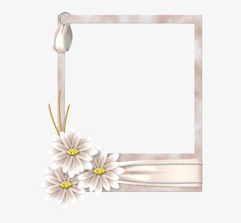 Picture Frame, transparent png #10096455