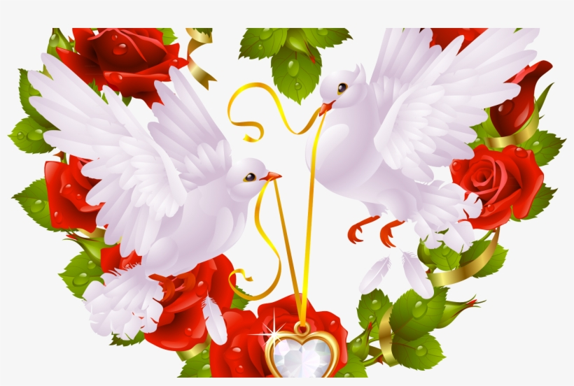 Love Birds Images For Facebook, transparent png #10119756