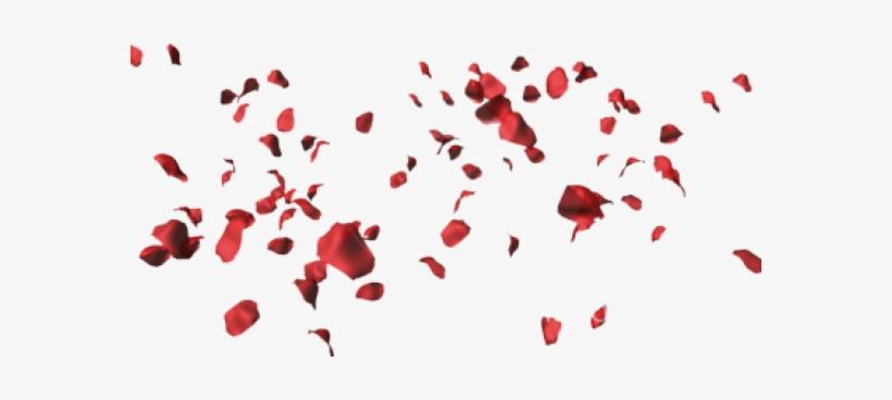 Rose Petals Falling Png Download - Rose Petals Transparent Png, transparent png #1020474