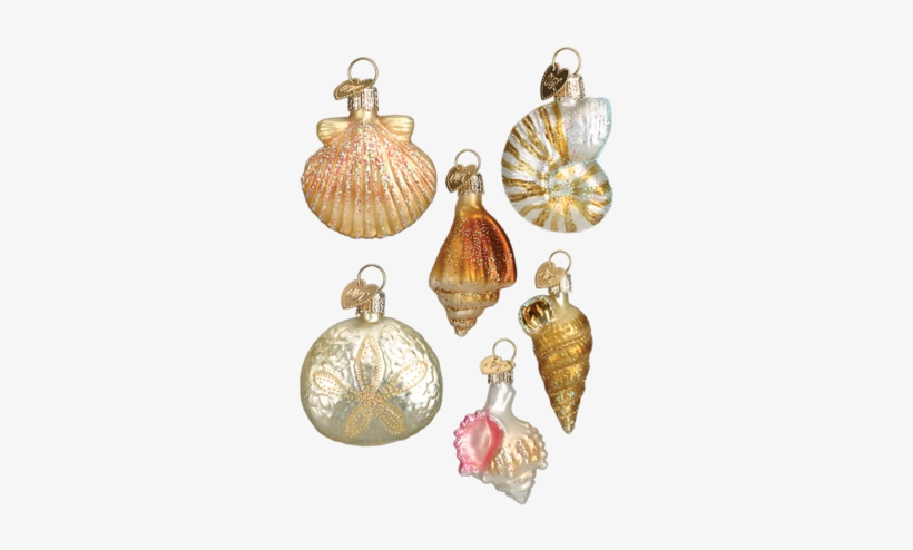 Sea Shell Ornaments Beach Christmas Ornaments Png Free