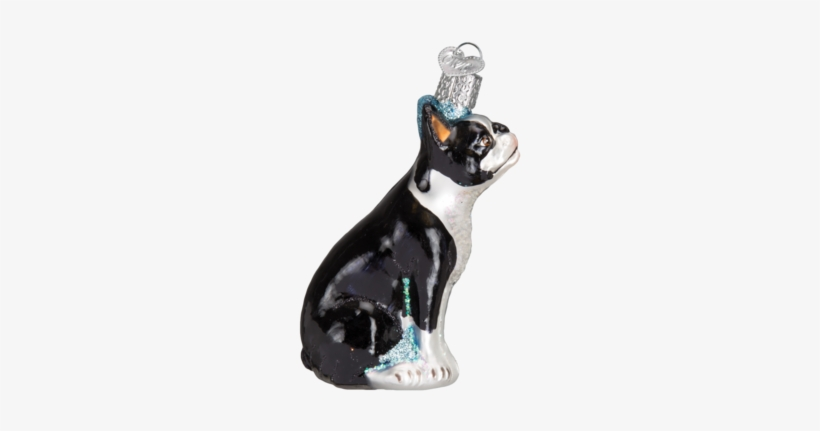 Boston Terrier Ornament - Photography Camera Glass Blown Hanging Christmas Ornament, transparent png #1031110
