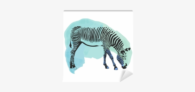 Colorful Watercolor Zebra Cover - Watercolor Painting, transparent png #1031152