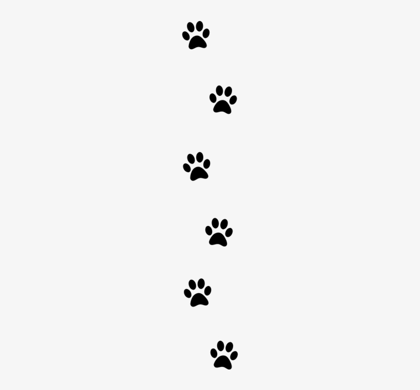 Paw Print Free Pictures On Pixabay Paw Print Clipart - Wall