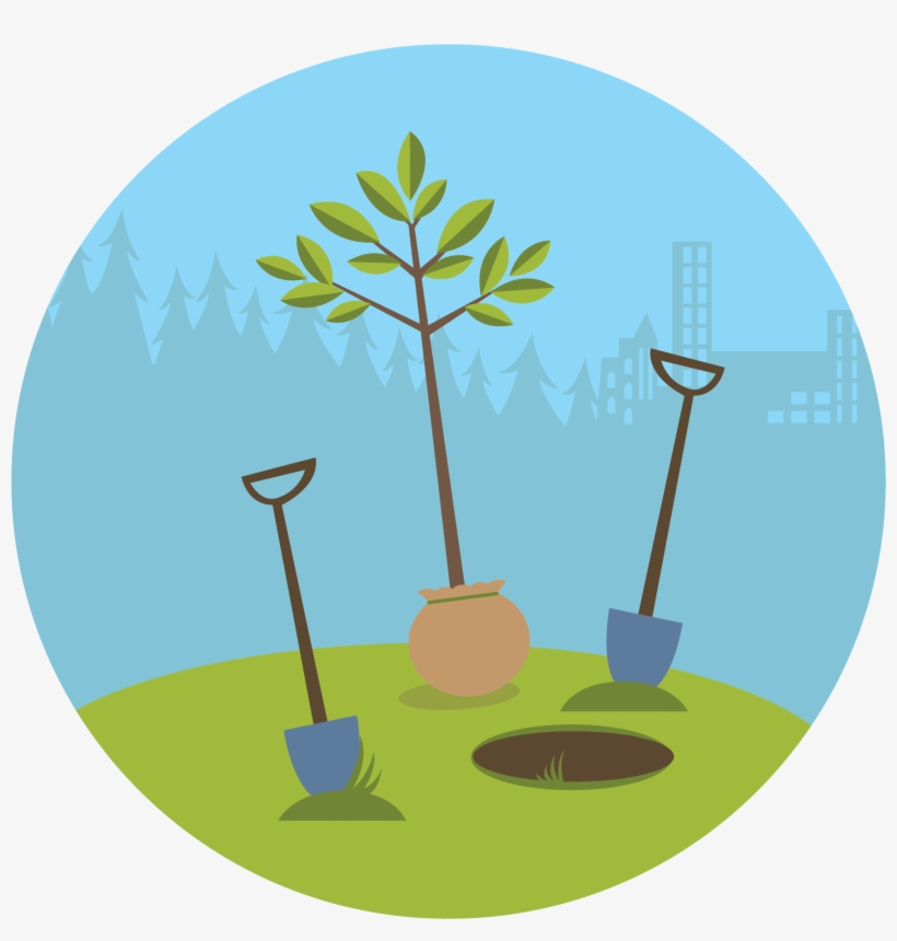 How To Plant A Tree - Plant A Tree Cartoon, transparent png #1037140