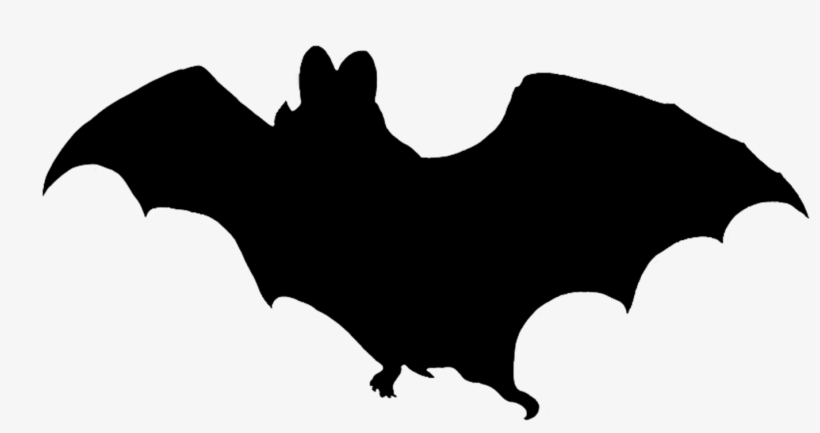 Vampire Bat Silhouette - Halloween Clipart Bat, transparent png #1051335