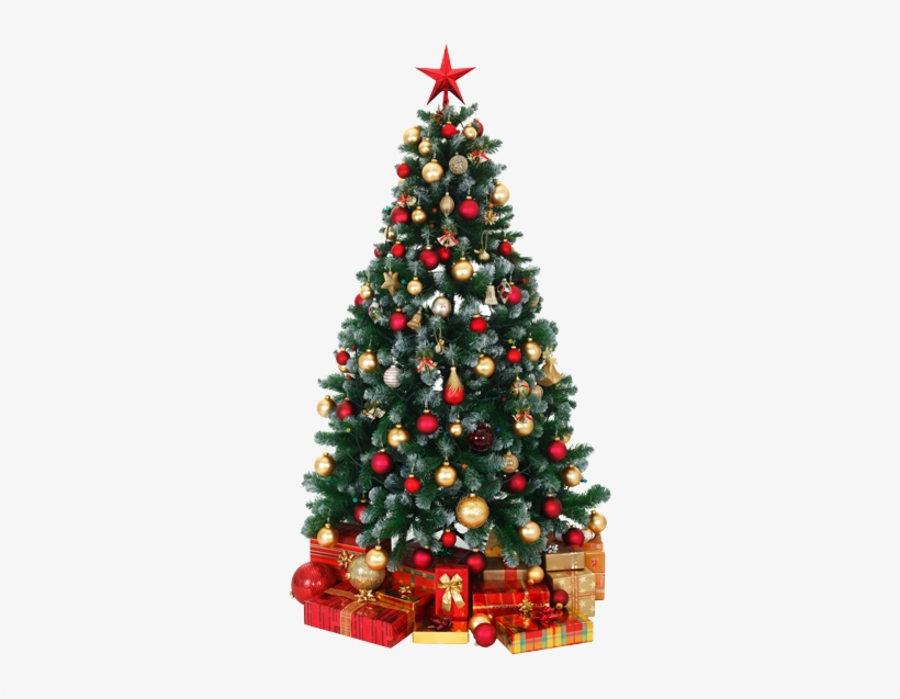 There Was An Error Processing Your Signup - Decorated Christmas Tree Png, transparent png #1061336