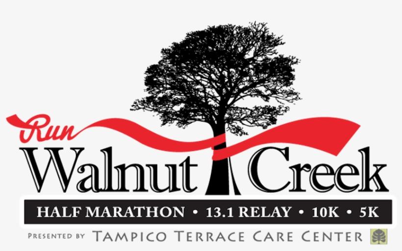 Walnut Creek Half Marathon - Thank You... (from Patient) Card, transparent png #1063122