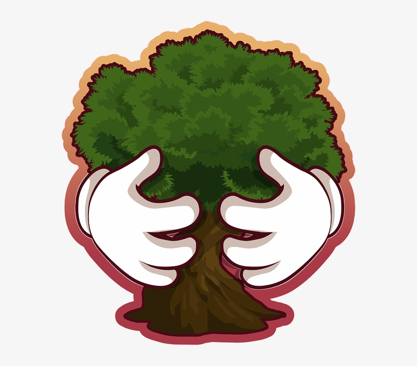 Save Tree Png Pic - Tree Conservation, transparent png #1063473