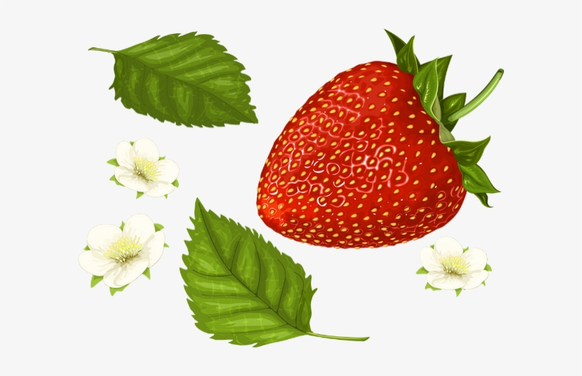 Fraise Png, Tube - Strawberry - Fraise - Skull Manches Longues,t-shirt, transparent png #1065495