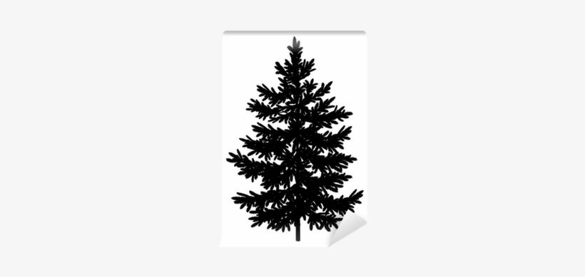 Christmas Spruce Fir Tree Silhouette Wall Mural • Pixers® - Fir Tree Silhouette, transparent png #1087754