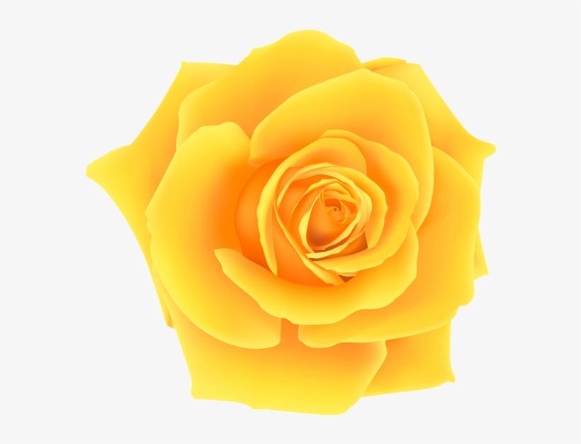 Yellow Roses Clip Art Yellow Rose Png Clip Art Image Rosa Amarela