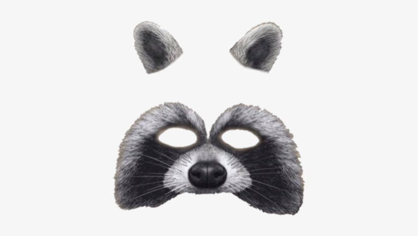 37 Images About Snapchat Filters ♡ On We Heart It - Snapchat Raccoon Filter Png, transparent png #117596