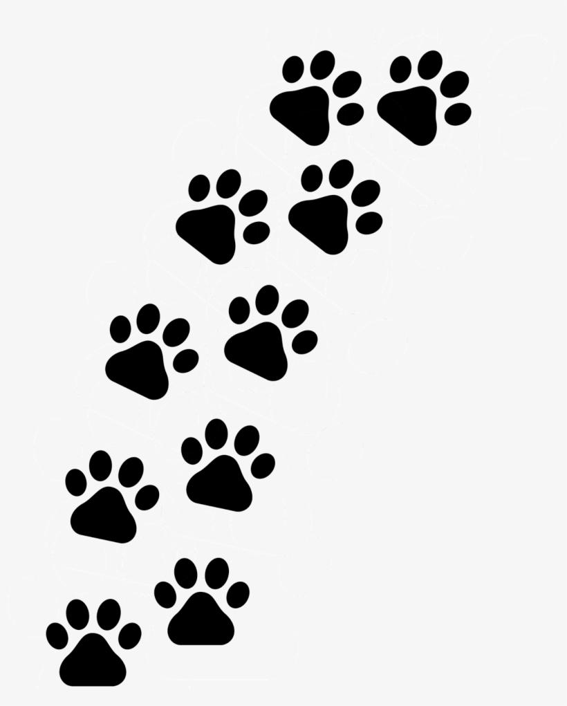 Patinhas De Cachorro Png Huellitas De Perro Png Free Transparent