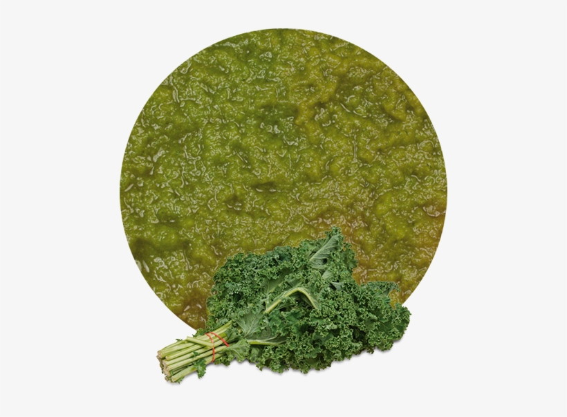 The Consumption Of Kale Is Highly Recommended Because - Kale Fresh Produce Fruit Vegetables Per Bundle Each, transparent png #1134583