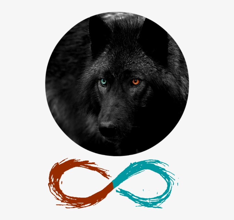 Immortalized Banner Infinity Sign Wolf Red Blue Black