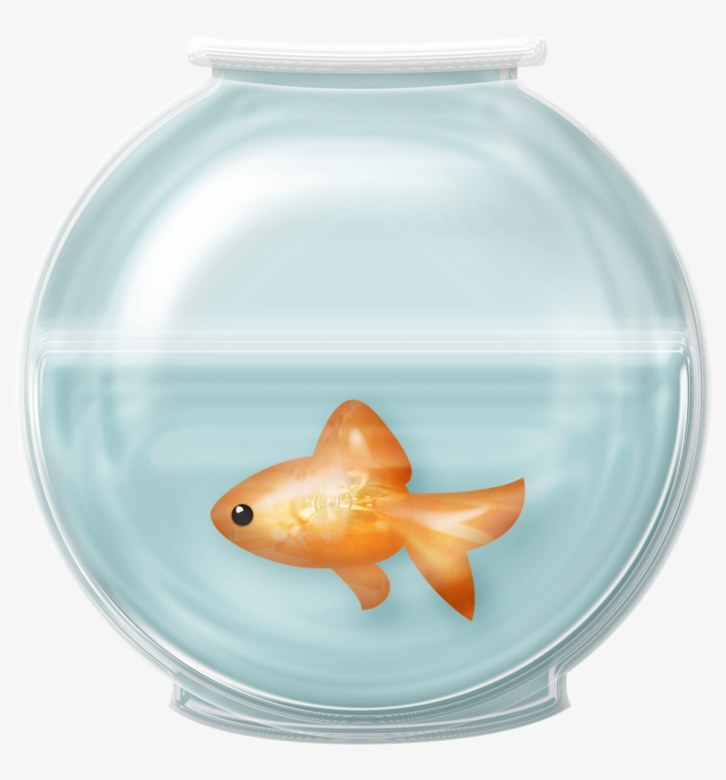 28 Collection Of Fish Bowl Clipart Free - Fish In Bowl Png, transparent png #1158902