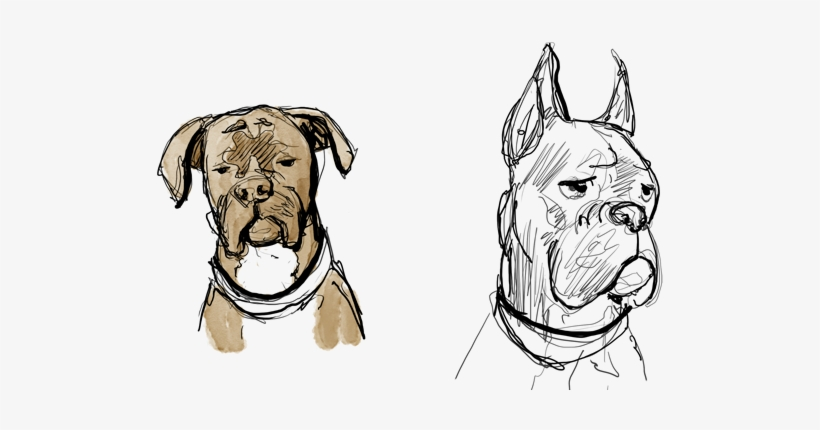 Abandon Bonus Page Draw A Boxer Dog Face Free Transparent Png