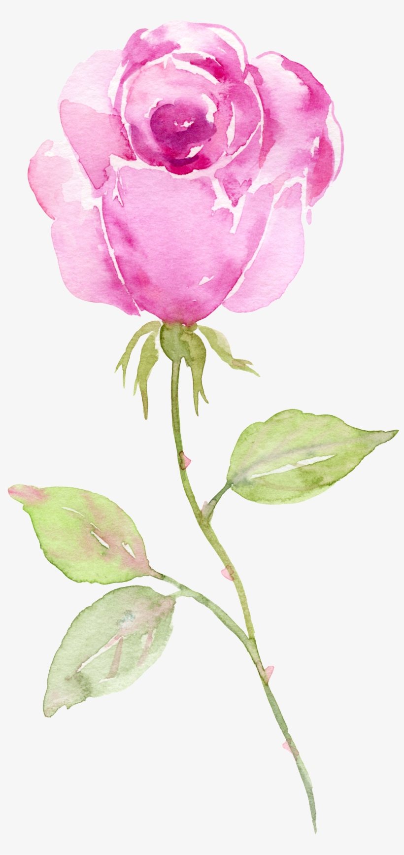 Watercolors - Foral Business Thank You Card, transparent png #1178490