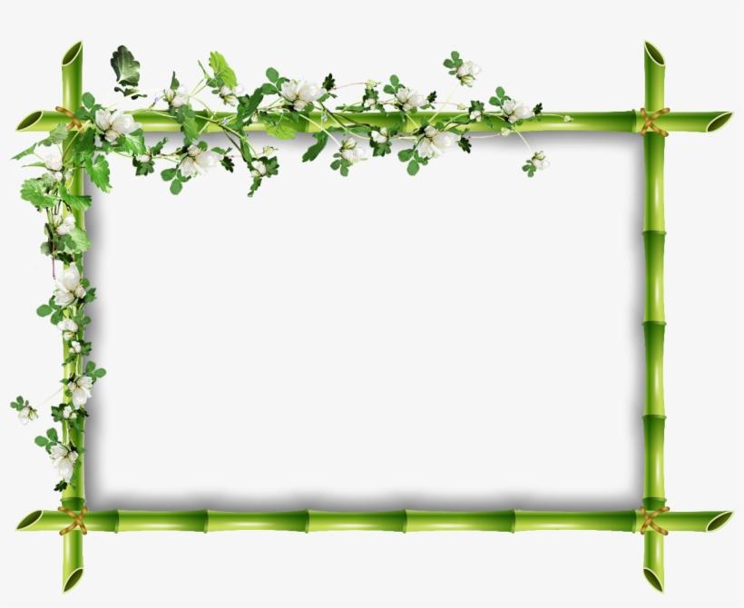 Cadre Bambou Fleur - Cadre Vert Png, transparent png #1188301