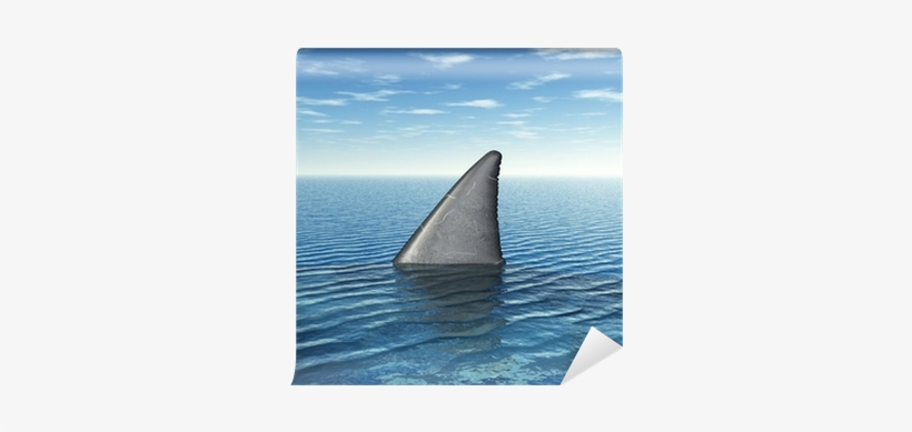 Shark Week: Everything You Need To Know, transparent png #1199757