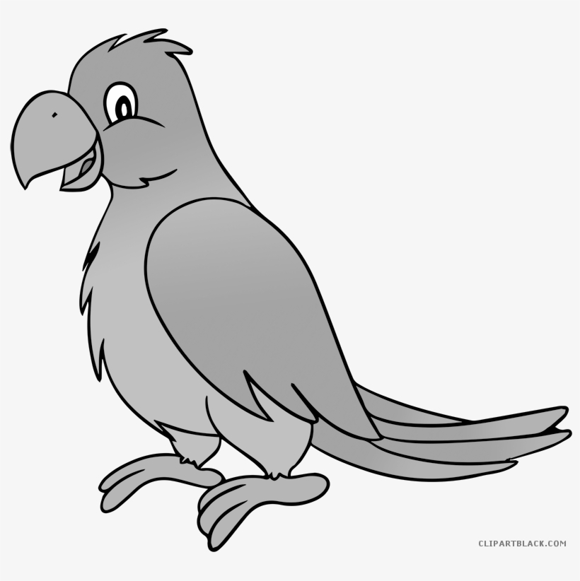 Grayscale Animal Free Black White Images Clipartblack Parrot Black And White Free Transparent Png Download Pngkey