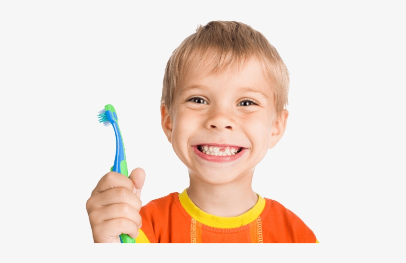 Children, Kids Png Image Without Background - Brush Your Teeth Every Day, transparent png #125273