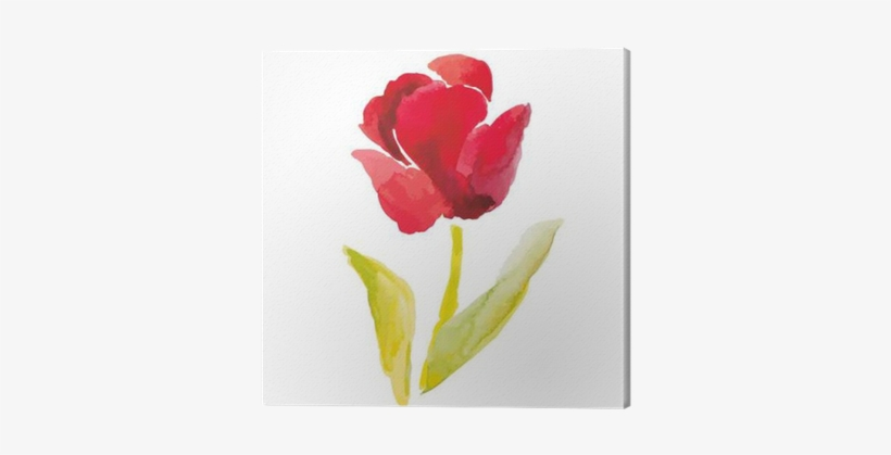 Red Tulip On The White Background - Watercolor Painting, transparent png #126134